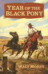 Year of the Black Pony, by Walt Morey