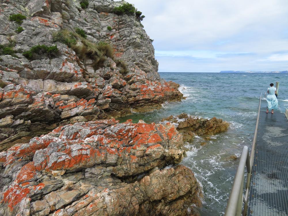 Rocky Cape 07