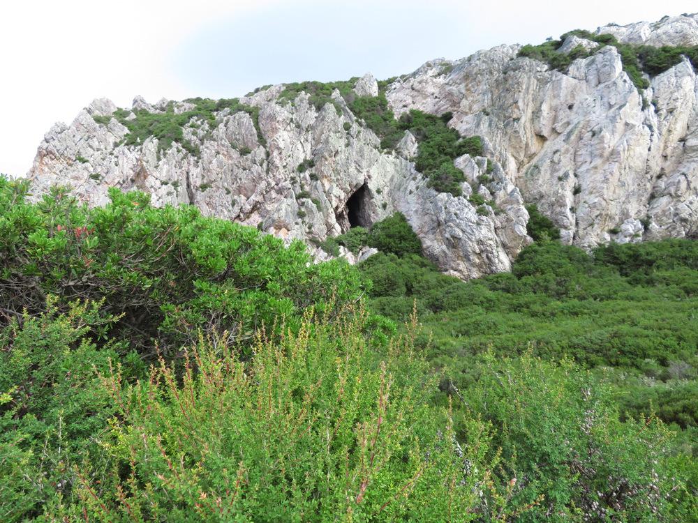 Rocky Cape 15
