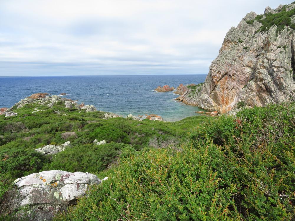 Rocky Cape 16