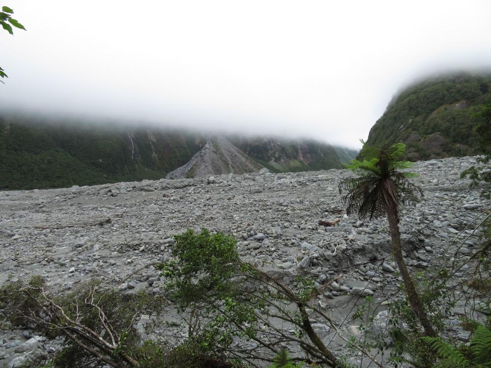 Fox Glacier and Harihari – January 2020 05